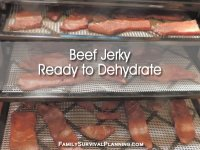 Make Your Own Jerky