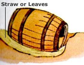 barrel root cellar