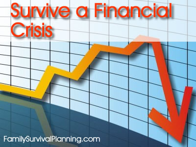 Survival a Financial Crisis