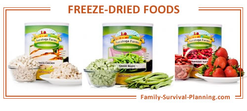 freeze-dried foods