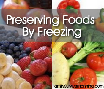freezing foods for the home Preserving food by freezing if food is stored in a freezer at -18° c it will keep well for at least 6 months freezing meat and freezing vegetables are two ways we can preserve our food.