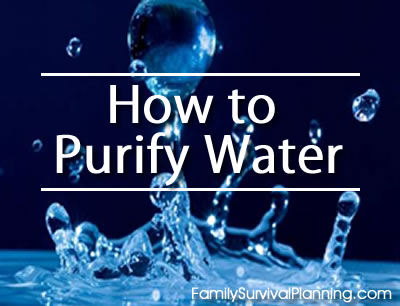 purified water