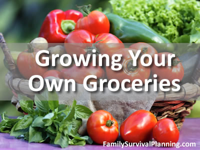GROW YOUR OWN GROCERIES PDF DOWNLOAD