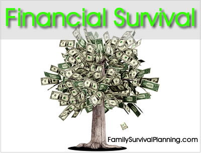 Financial Survival