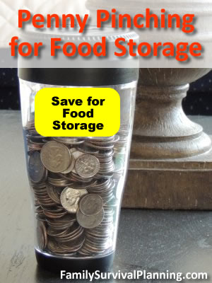 Penny Pinching for Food Storage