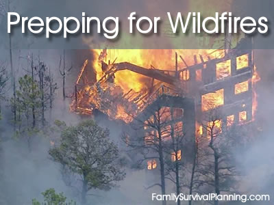 How to Prepare Your Family For Wildfires and Forest Fires