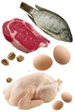 Meats, Poultry, Fish, and Eggs