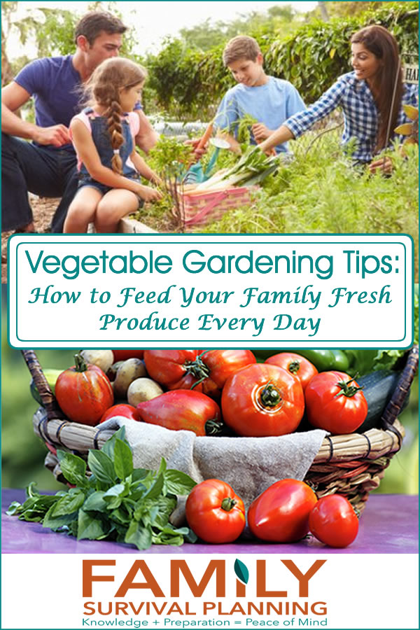 Vegetable Gardening Tips - Growing Your Own Groceries