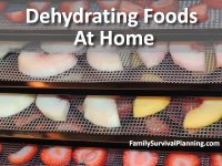Dehydrating Foods at Home